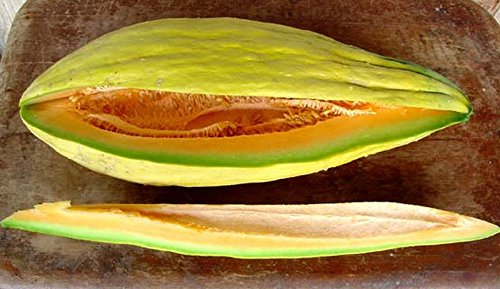 Banana Melon - Banana-shaped fruit! - Sweet & Spicy Salmon Flesh! (50 - Seeds) (Sorts Banana)