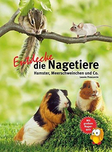Entdecke die Nagetiere: Hamster, Meerschweinchen & Co. (Entdecke - Die Reihe mit der Eule)