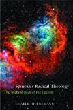 Spinoza's Radical Theology, Charlie Huenemann, 1844655784