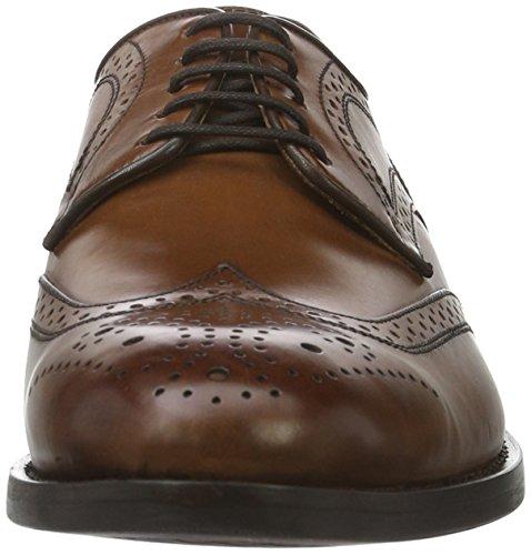 Dk Zapatos Geox Hampstead Hombre Cognacc6026 Cordones de Para Braun D U Brogue tqTBrwnqvx