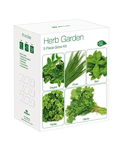 Indoor Herb Garden Grow Kit | Grow Your Own Basil, Parsley, Chives, Oregano & Cilantro | Exclusively By TotalGreen Holland - Herb Seed Kits
