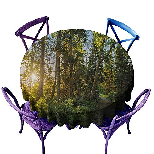 Stain Resistant Round Tablecloth,Landscape National Park in Cape Breton Highlands Canada Forest Path Trees Tranquility Photo,for Events Party Restaurant Dining Table Cover,55 INCH,Blue Green]()