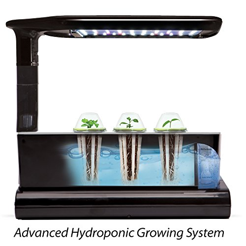 Miracle-Gro-AeroGarden-Sprout-LED-with-Gourmet-Herb-Seed-Pod-Kit-Black