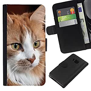 eJoy---La carpeta del tirón la caja de cuero de alta calidad de la PU Caso protector - HTC One M9 - --Norwegian Forest Cat Maine Coon