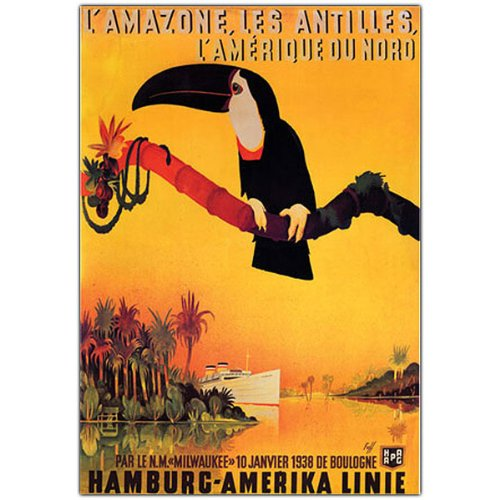 USA Wholesaler- 5573757-L'amazone, by Peter Fussey-Framed 18x24 Canvas