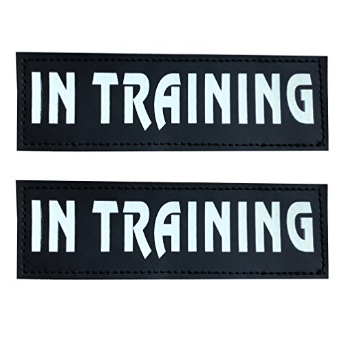 (SGODA IN TRAINING Patch for Pet Vest and Harness, Large, 6