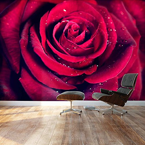 Mural - Close up of Beautiful Red Rose with Waterdrops | Self-adhesive Vinyl Wallpaper / Removable Modern Decorating Wall Art - 100