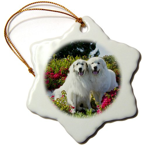 3dRose ORN_142938_1 Two Great Pyrenees Dogs Together Us05 Zmu0268 Zandria Muench Beraldo Snowflake Ornament, Porcelain, ()