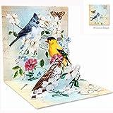 3D Greeting Card - GARDEN BIRD TRIO - All Occasion