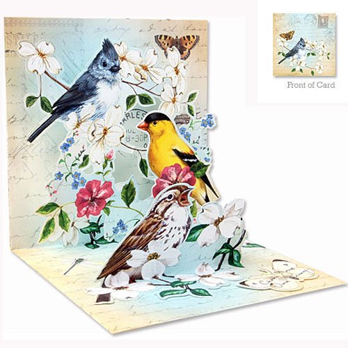 3D Greeting Card - GARDEN BIRD TRIO - All Occasion