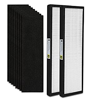 2-Pack FLT4825 True HEPA Air Purifier Filter B Replacement Compatible for GermGuardian Models AC4825 AC4850PT AC4900CA AC4820 PureGuardian AP2200CA Plus 8 Carcon Filter