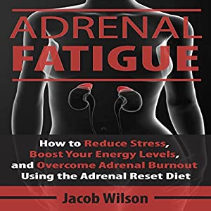 Adrenal Fatigue Audiobook