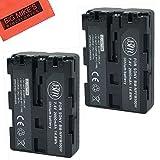 BM Premium Pack Of 2 NP-FM500H Batteries for Sony Alpha a77II, SLT-A57, SLT-A58, SLT-A65V, SLT-A77V, SLT-A99V, SLT-A100, SLT-A200, SLT-A300, SLT-A350, SLT-A450, SLT-A500, SLT-A550, SLT-A560, SLT-A580, SLT-A700, SLT-A850, SLT-A900 DSLR Digital Camera + More!!