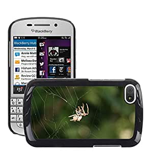 Hot Style Cell Phone PC Hard Case Cover // M00115471 Spider Web Insect Bugs Nature // BlackBerry Q10