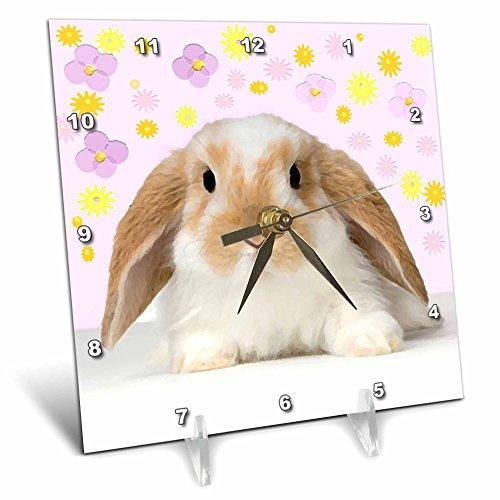 Cheap 3dRose dc_4802_1 Rabbit-Desk Clock, 6 by 6-Inch