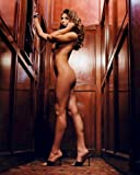 Cerina Vincent 8x10 Celebrity Photo #04