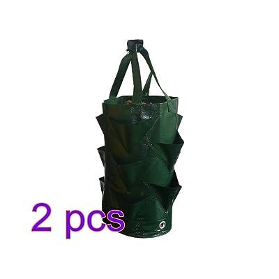 Zebery 2 Pack 3 Gallons Strawberry Planting Bag - Gardening Flower Planting Bag, Aerial Garden Plant Moisturizing Breathable Bag, Garden Tool Kit for Planting Strawberry Flowers Plants : Garden & Outdoor
