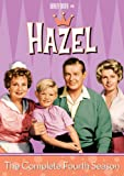 Hazel: The Comp