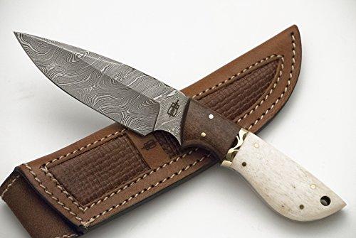 Buck n Bear Custom Handmade Fixed Blade Damascus Hunting Knife (Bone/Walnut handle)
