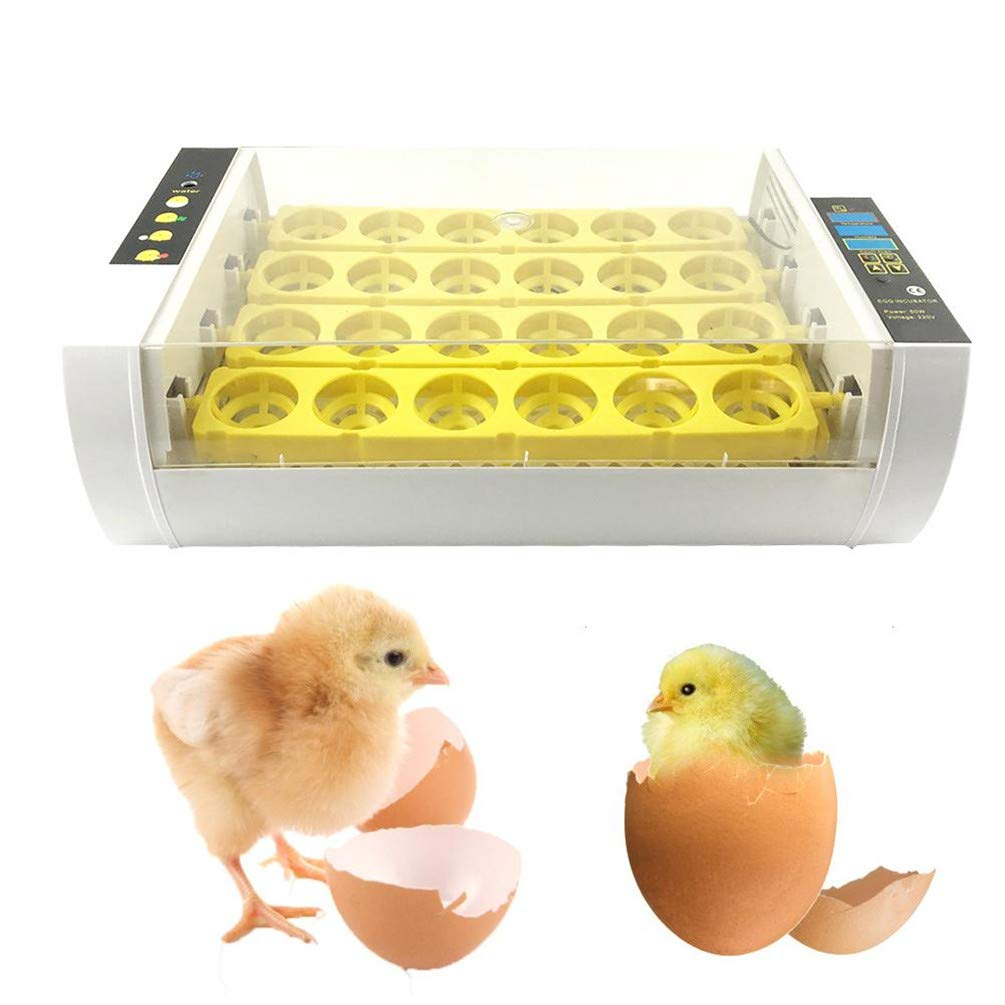 24 Eggs Incubator 60W Digital Temperature Hatchery Machine Hatcher for Hatching Chickens Ducks Geese 110V/ 220V