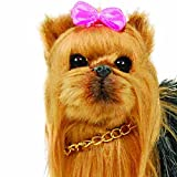 "Dolls Best Friend Adorably Realistic Yorkie Dog with Collar & Leash! ""AWSOM"" Perfect for Your 18 Inch American Girl Doll! Dog Carrier Box. Animal Accessories Designed for 18 inch girl dolls."
