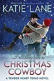 Falling for a Christmas Cowboy (Tender Heart Texas Book 5)
