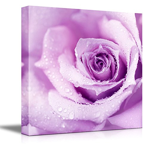 Canvas Prints Wall Art - Abstract Purple Wet Rose Beautiful Macro Flower with Morning Dew | Modern Wall Decor/Home Decoration Stretched Gallery Canvas Wrap Giclee Print & Ready to Hang - 16