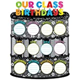 owl birthday chart for classroom - Creative Teaching Press Our Class Birthdays Poster Chart (0962)