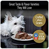 CESAR Soft Wet Dog Food Classic Loaf in Sauce