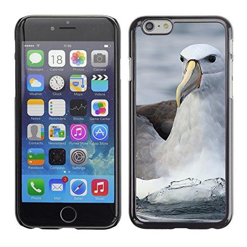 """Premio Sottile Slim Cassa Custodia Case Cover Shell // F00007469 mouette // Apple iPhone 6 6S 6G 4.7"""""""