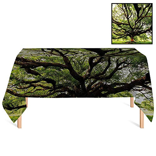 SATVSHOP Dinning Tabletop Decoration /60x120 Rectangular,Nature The Largest Monkey Pod Tree in Thailand Eastern Green Big Branches Growth Eco Photo Green Brown.for Wedding/Banquet/Restaurant.