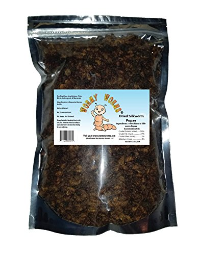 - Wormyworms 2 LB Dried Silkworm Pupae for Chicken, Koi, Fish, Reptiles, Small Mammals & Terrapin