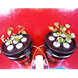 14 Site Indoor Plant Cloning System - Uses Aeroponics Air Bubble Technology - Everything You Need!