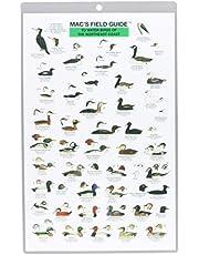 Mac's Field Guides: Northeast Coastal Water Birds