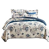 HALZANDER Bedspread Sets, 3 Piece Bedding, Reversible Quilted Comforter, Soft Cotton Coverlet Set, Blue Seashell Style, Queen Size