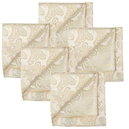 KissTies 5 PCS Cream Ivory Pocket Square Paisley Wedding Hankies Gift Set