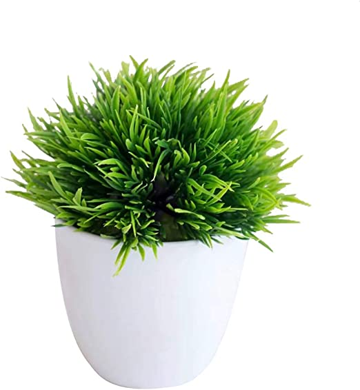 pushfocourag Plantas Artificiales, 1 Pieza de Soporte para Plantas Artificiales en Maceta, para jardín, Boda, decoración del hogar, Fiestas: Amazon.es: Hogar