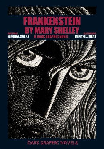 Frankenstein A Dark Graphic Novel