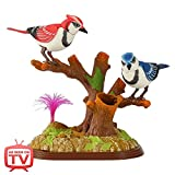 Chatty Blue Jays - Electronic Talking Birds - As Seen on TV