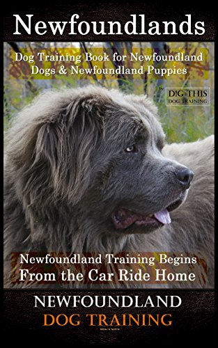 (Newfoundlands Dog Training Book for Newfoundland Dogs & Newfoundland Puppies by D!G THIS DOG Training: Newfoundland Training Begins From the Car Ride Home Newfoundland Dog Training)
