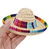 AutumnFall Pet Hat, Hat for Your Pet,Adjustable Buckle Multicolor Dog Cat Mexican Straw Sombrero Hat Pet Costume For Small Pet (B)