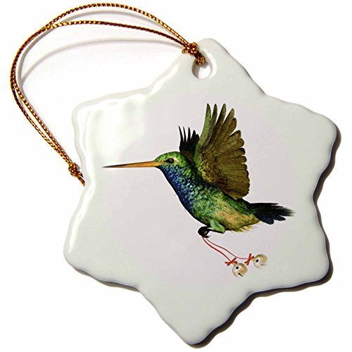 3dRose orn_37130_1 Hummingbird Christmas Snowflake Porcelain Ornament, 3-Inch