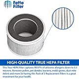 Fette Filter- Air Purifier Filter Compatible with