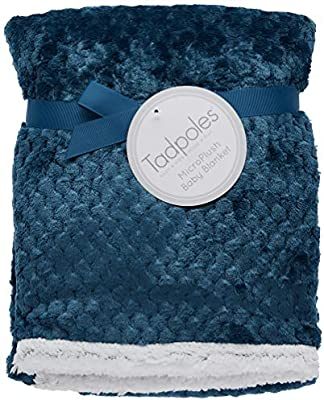 Tadpoles Popcorn Plush and Sherpa Ultra-Soft Baby Blanket Blue