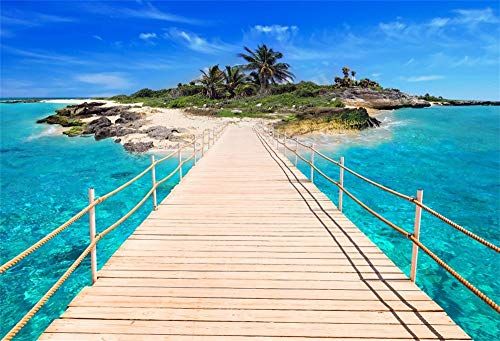 LFEEY 10x8ft Dream Summer Beach Pier Backdrop Caribbean Sea Bay Dock to Tropical Palm Tree Island Landscape Scenery Blue Ocean View Photography Background Cloth Photo Studio Props