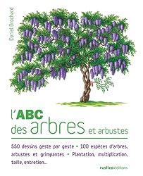 L'Abc des arbres et arbustes