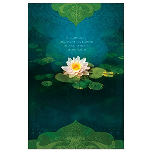 """Tree-Free Greetings EcoNotes Stationary- Blank Note Cards with Envelopes, 4"""" x 6"""", Bouquet of Light, Zen Themed, Boxed Set of 12 (FS66555)"""