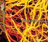Bradley Fish: Unstrung