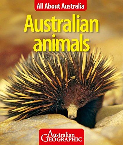 All About Australia  Australian Animals