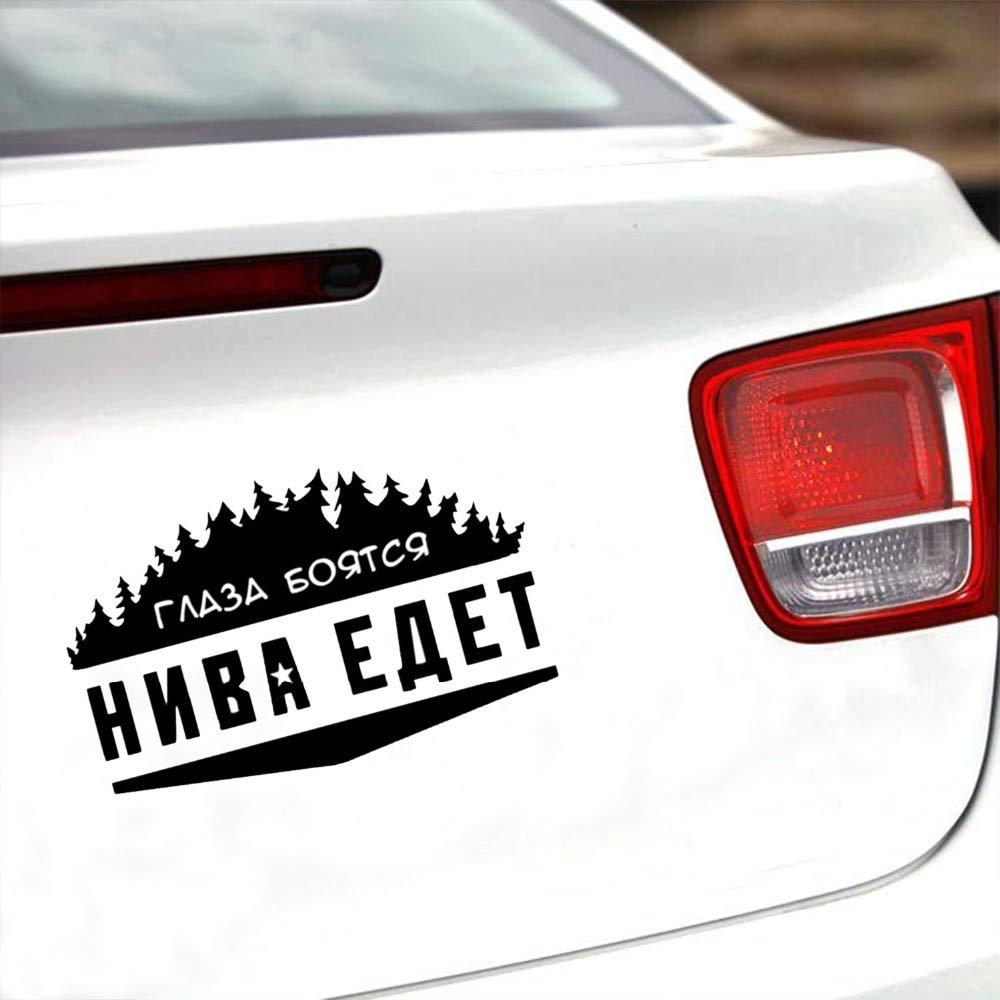 Car Niwa: reviews